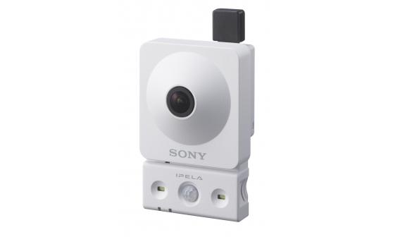 720p/30 fps Wireless Network Camera with White-lite LED Illuminators Powered by IPELA ENGINE EX™ - C Series